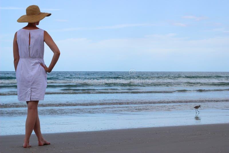 Frau, die Ozean mit Seemöwe auf Ufer betrachtet lizenzfreie stockfotografie