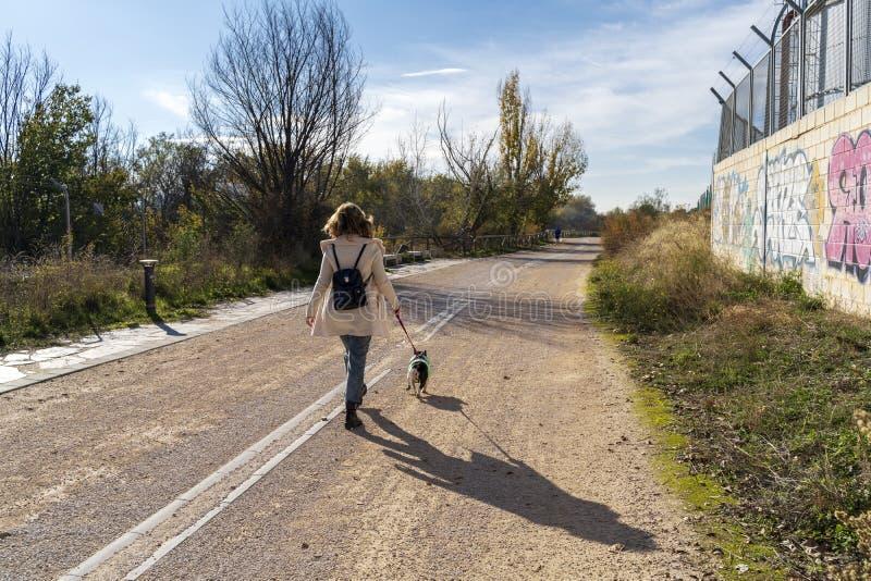 Frau, die rückwärts mit ihrem Hund der französischen Bulldogge geht und geht stockfoto