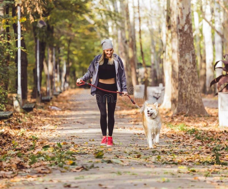 Frau, die in schönen Park mit Akita-Hund läuft und geht stockfotos
