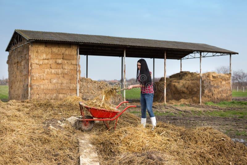 Frau, die schmutzige Arbeiten über Bauernhof bearbeitet stockfoto