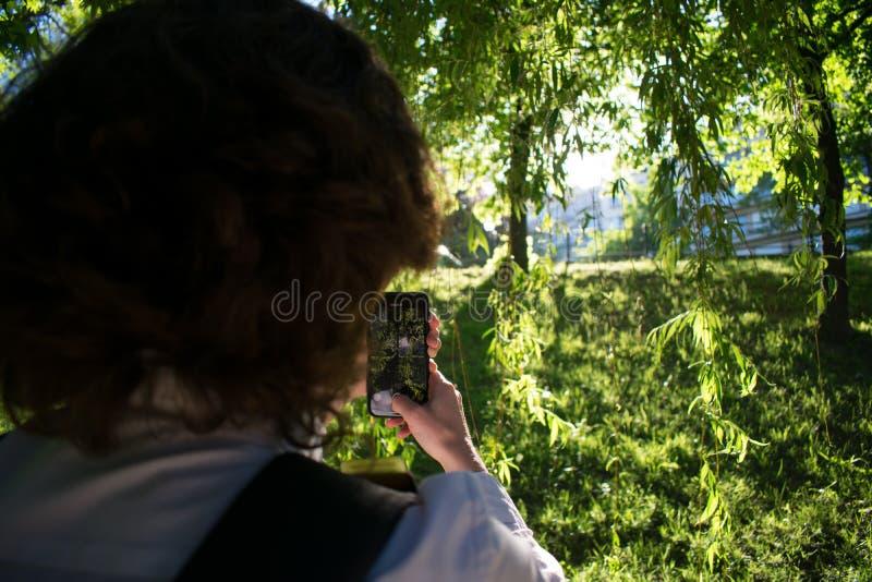 Frau, die Smartphone verwendet, um sch?nen Sonnenuntergang im Park gefangenzunehmen lizenzfreie stockfotografie