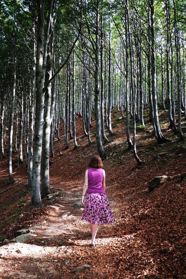 Frau, die in sunlit Holz geht lizenzfreie stockbilder