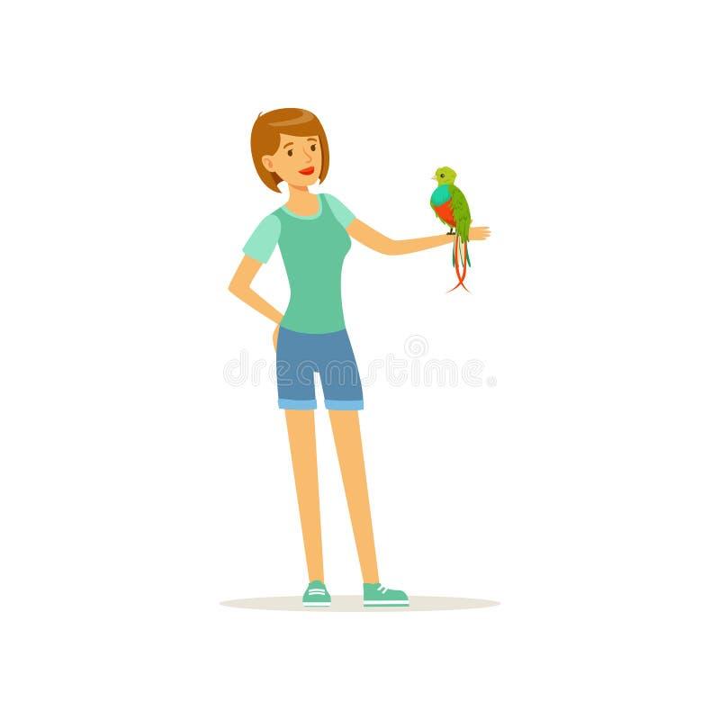 Frau, die tropischen Vogel mit farbigen Federn auf ihrer Hand hält Lächelnder Papagei der weiblichen Figur und des Keilschwanzsit stock abbildung