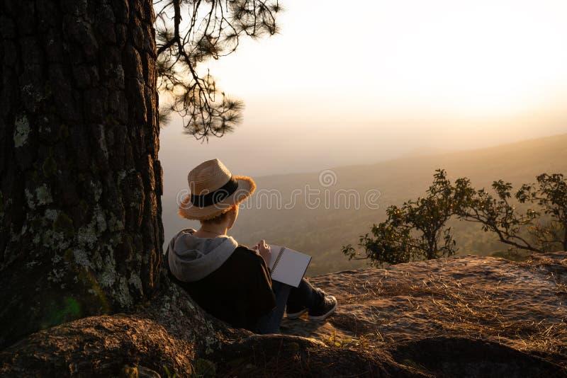 Frau, die unter Kieferlesung und -c$schreiben sitzt lizenzfreies stockfoto