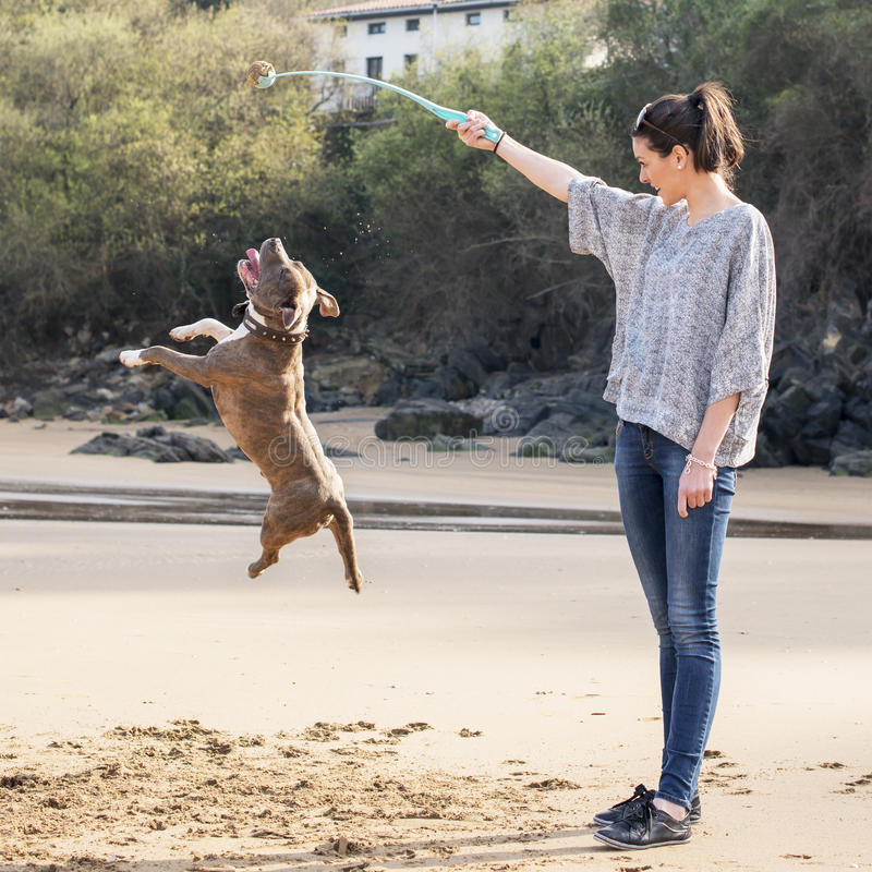 Frau, die von Ihrem Hund, im Freien spielt und traing. lizenzfreie stockfotos