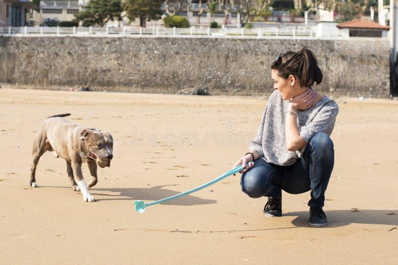 Frau, die von Ihrem Hund spielt und ausbildet. stockfoto