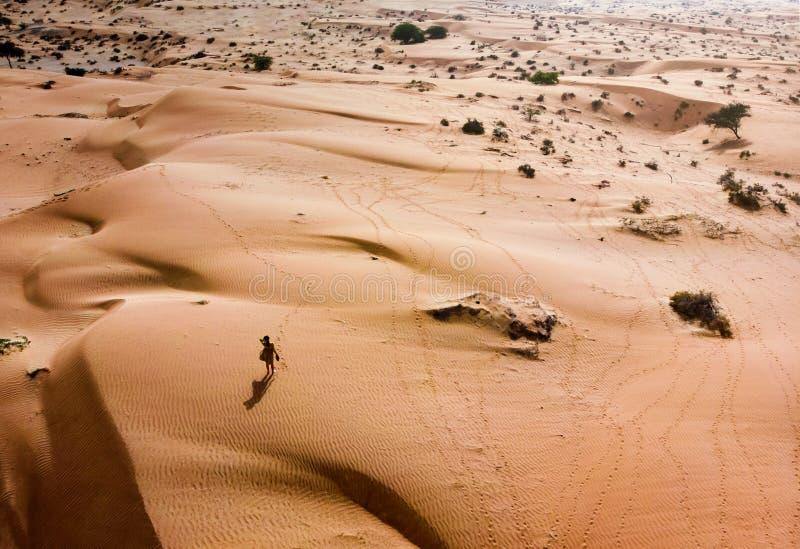 Frau, die in die Wüste auf Vogelperspektive geht lizenzfreies stockbild