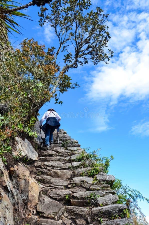 Frau, die zur Spitze von Machu Picchu wandert lizenzfreie stockbilder