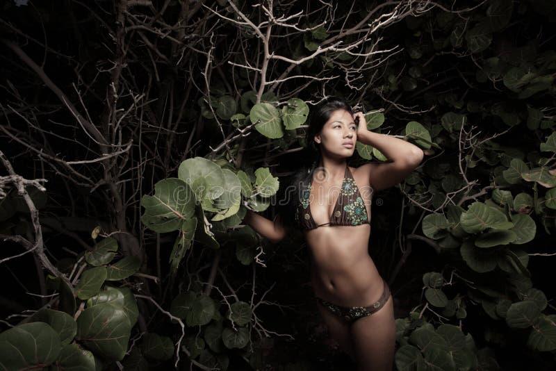 Frau durch die Mangroven am Strand stockbilder