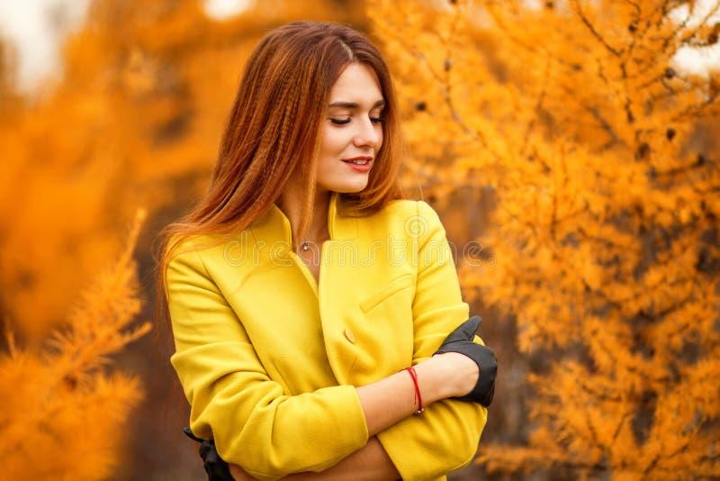 Frau in einem Herbstwald lizenzfreie stockfotografie