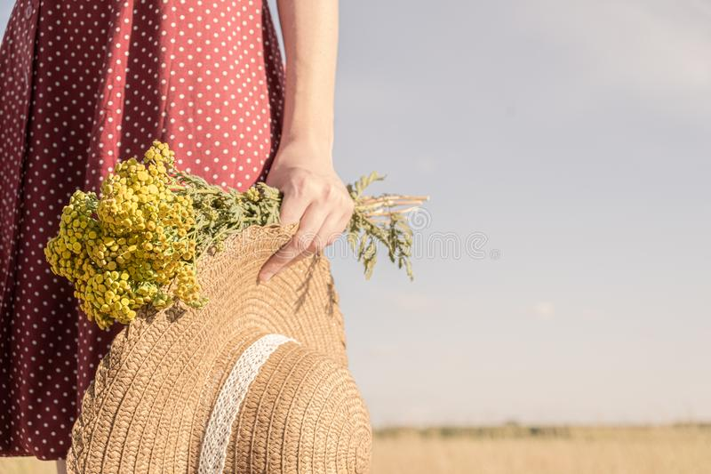 Frau hält Bündel von Feldblumen und von Hut stockfotos