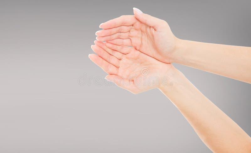 Frau höhlte die Hände, die etwas halten, lokalisierte auf grauem Hintergrund stockbild