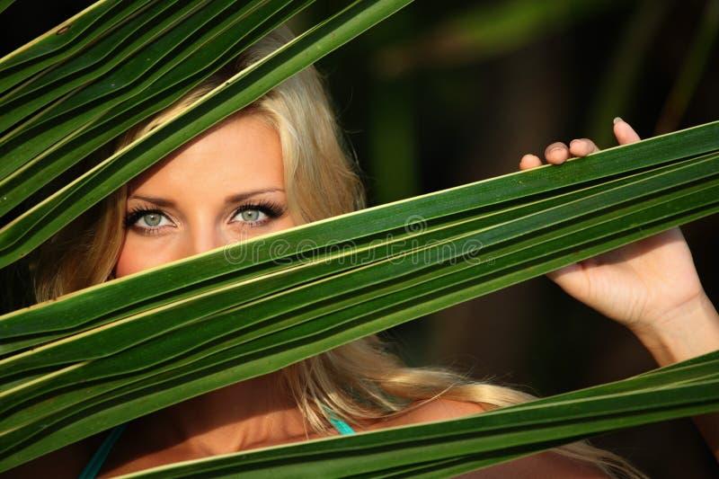 Frau hinter den Palmblättern stockbild