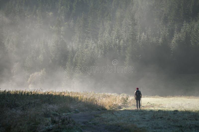 Frau im Nebel stockfotografie