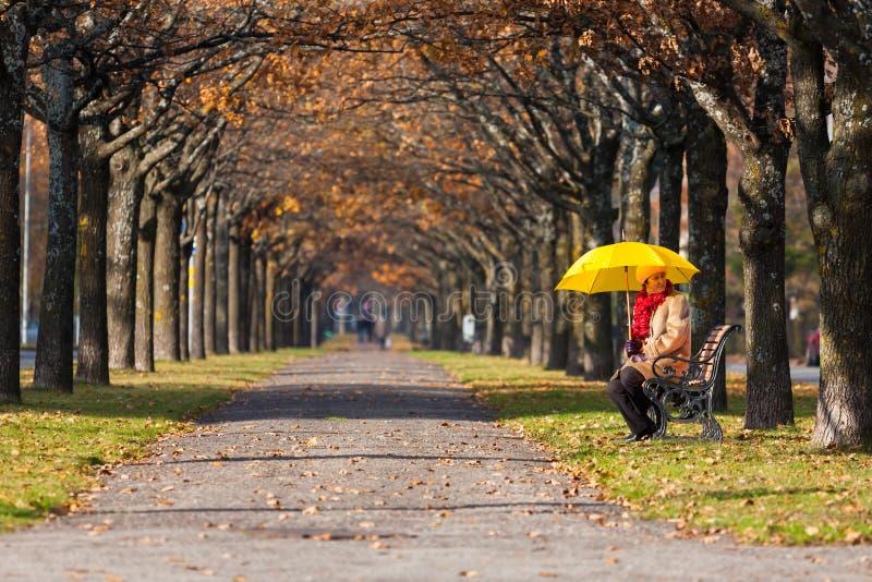 Frau im Park mit Regenschirm stockbilder