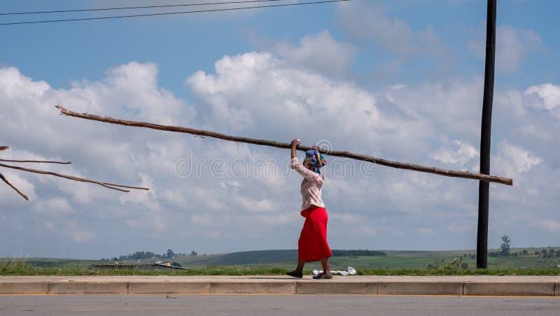 Frau im roten Rock trägt eine Länge des Holzes auf ihrem Kopf in ländlicher Transkei, Südafrika lizenzfreie stockfotos