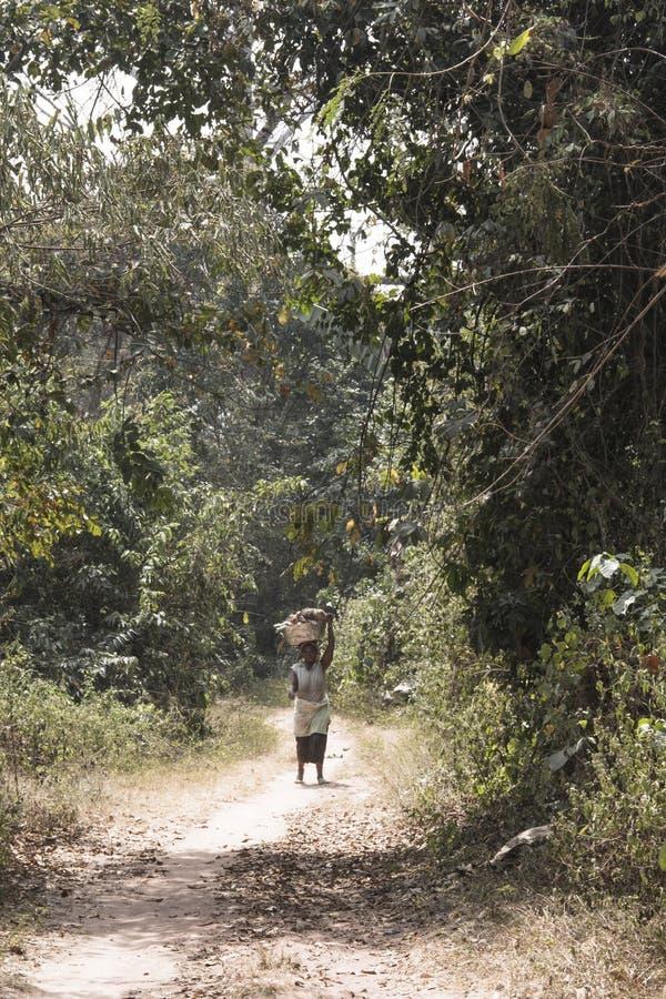 Frau im Wald in Tafi Atome in der Volta-Region in Ghana stockfotos
