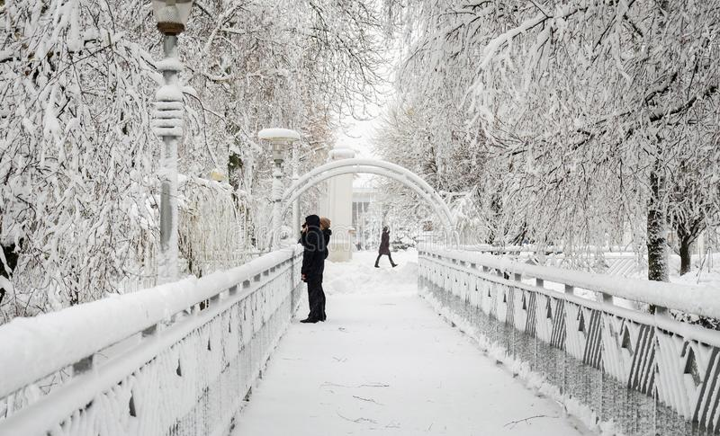 Frau mit Baby auf Brücke im Winter im Park lizenzfreie stockfotografie