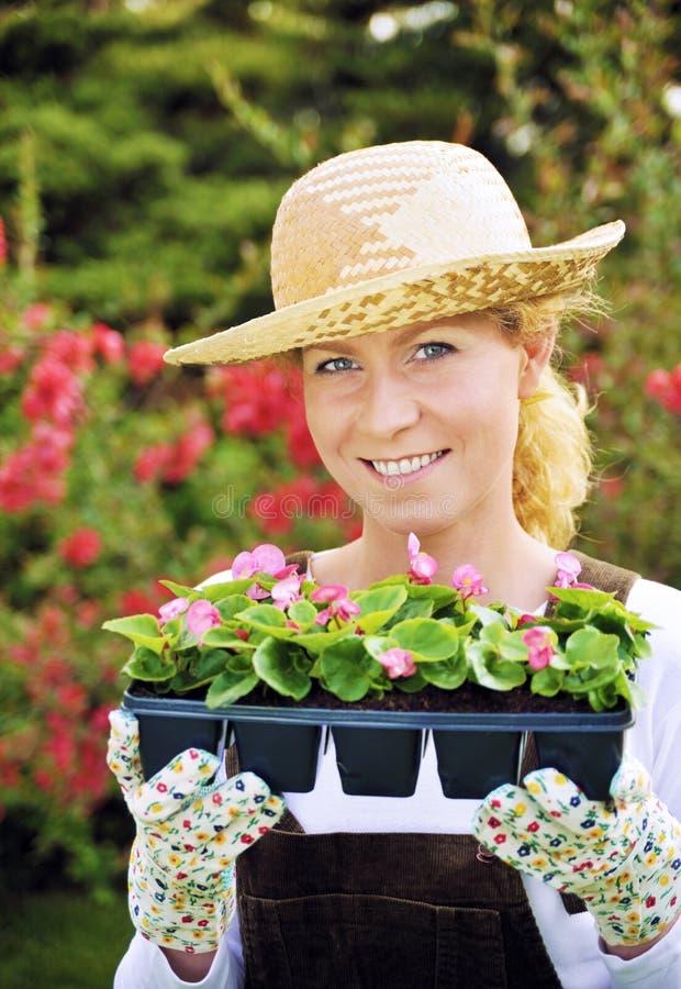 Frau mit Behälter-gewachsenen Anlagen lizenzfreie stockbilder