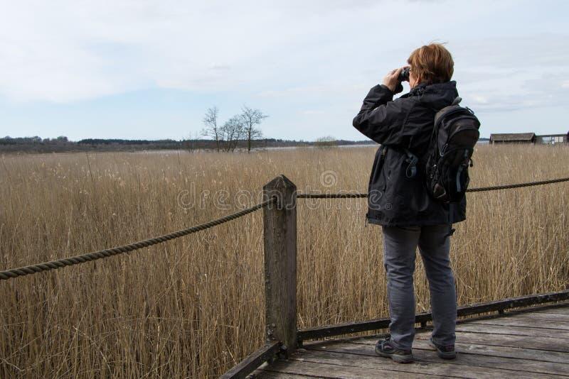 Frau mit binokularen 2 stockfoto