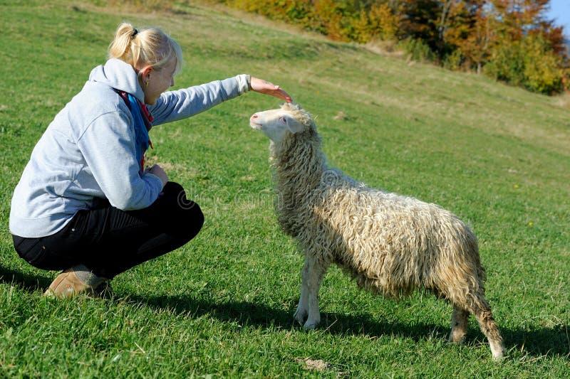 Frau mit einem kleinen Schaf am Bauernhof lizenzfreie stockfotografie