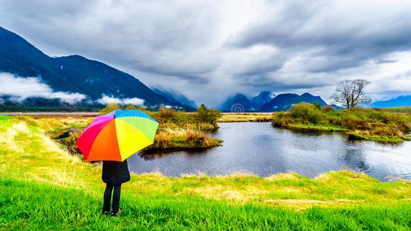 Frau mit einem Regenbogen farbigen Regenschirm unter dunklen Regenwolken an einem kalten Fr?hlingstag an den Lagunen von Pitt-Add stockbild