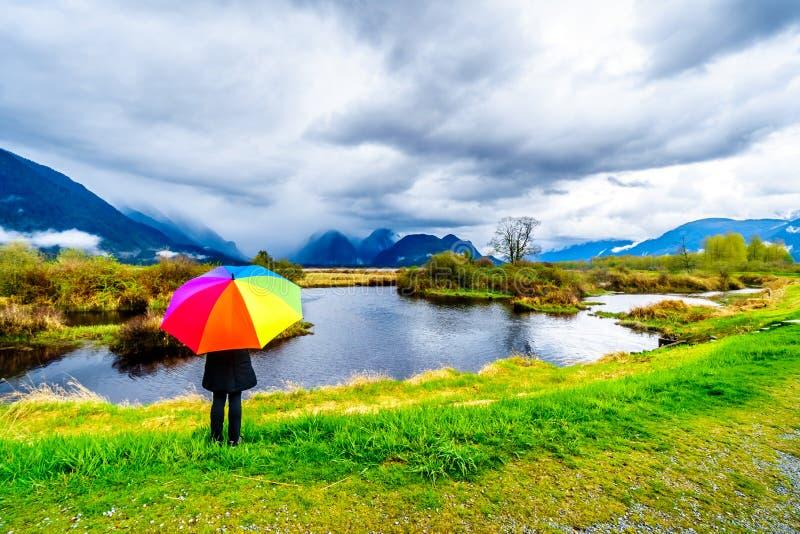 Frau mit einem Regenbogen farbigen Regenschirm unter dunklen Regenwolken an einem kalten Fr?hlingstag an den Lagunen von Pitt-Add lizenzfreie stockfotos