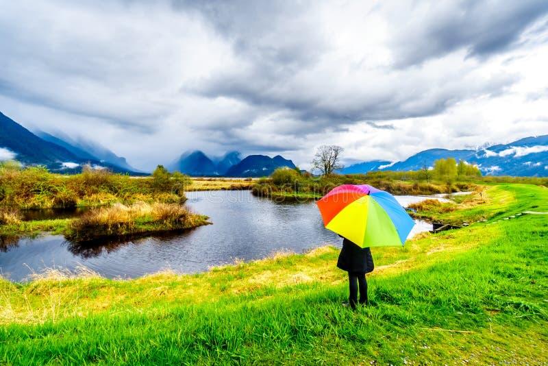 Frau mit einem Regenbogen farbigen Regenschirm unter dunklen Regenwolken an einem kalten Fr?hlingstag an den Lagunen von Pitt-Add stockfotos