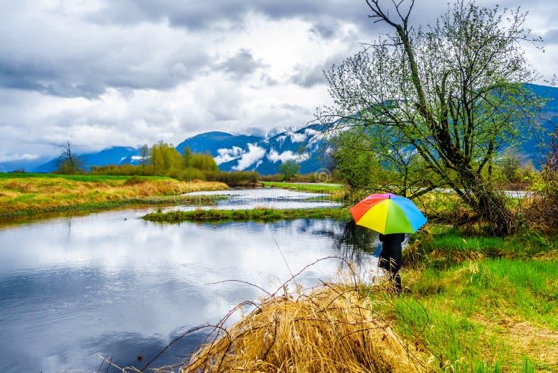 Frau mit einem Regenbogen farbigen Regenschirm unter dunklen Regenwolken an einem kalten Fr?hlingstag an den Lagunen von Pitt-Add lizenzfreies stockbild