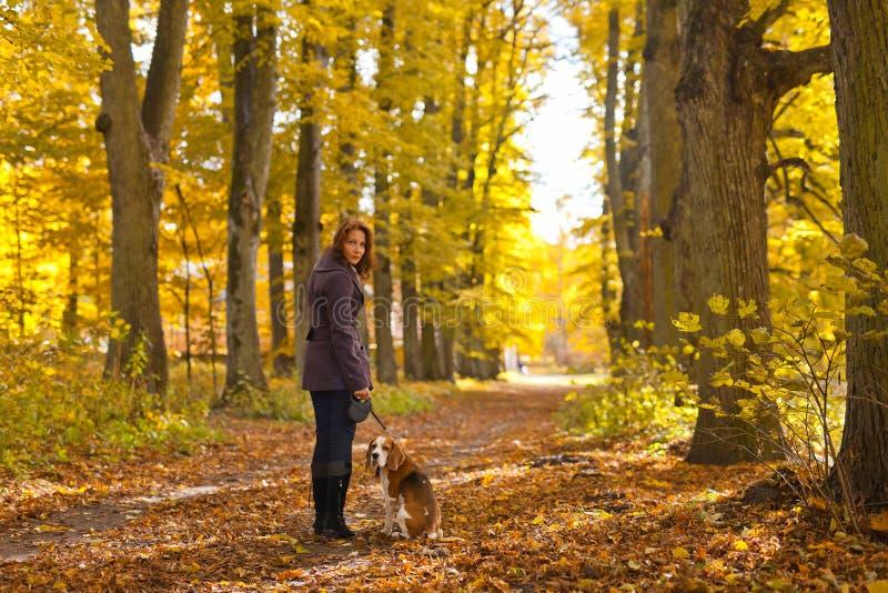 Frau mit Hund im Herbstpark stockfotos