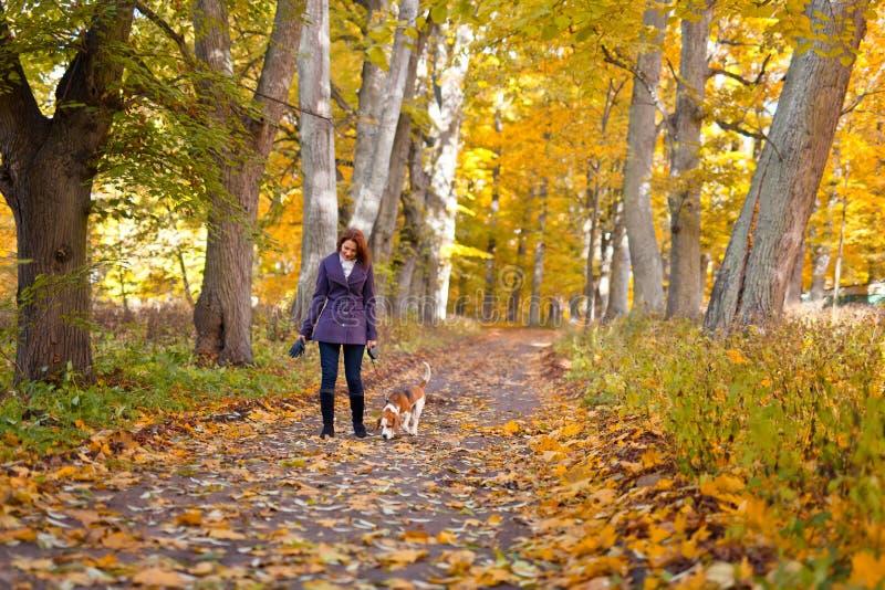 Frau mit Hund im Herbstpark lizenzfreie stockbilder