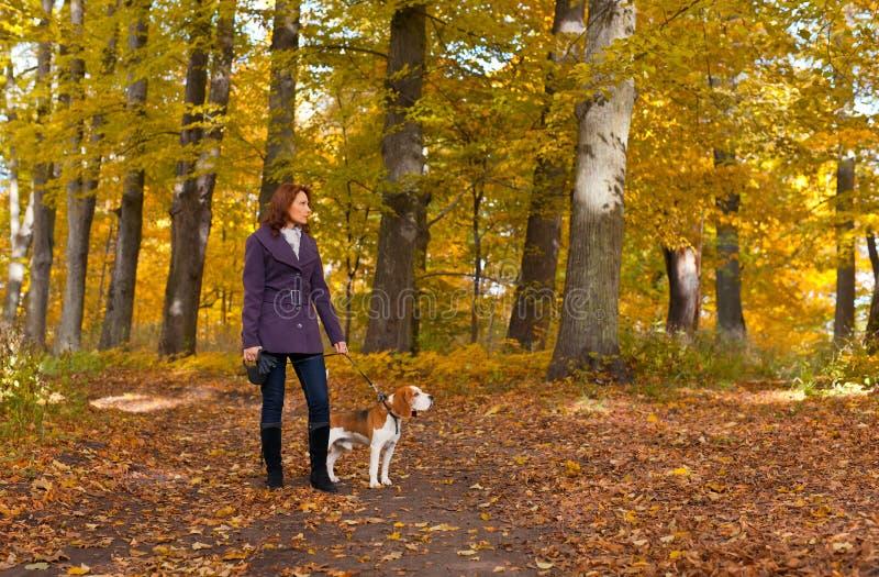 Frau mit Hund im Herbstpark lizenzfreies stockbild