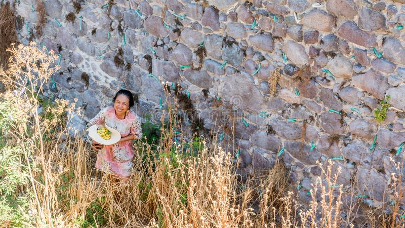 Frau mit Hut voll der Frucht nahe dem Steinwandlächeln stockbild