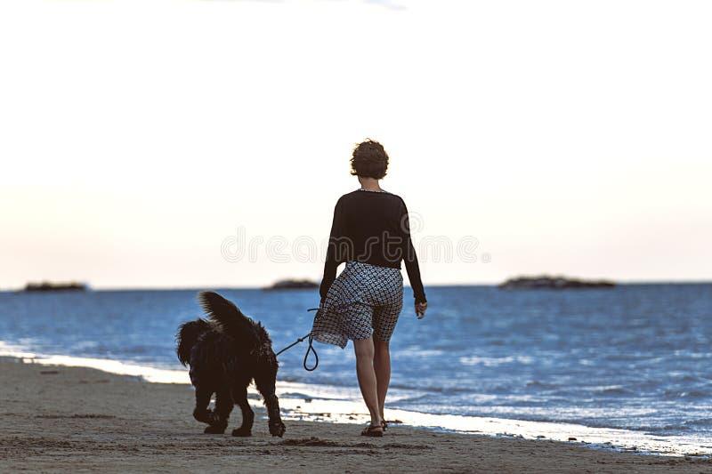 Frau mit ihrem großen untrennbaren Hund, der durch das Meer geht stockbild