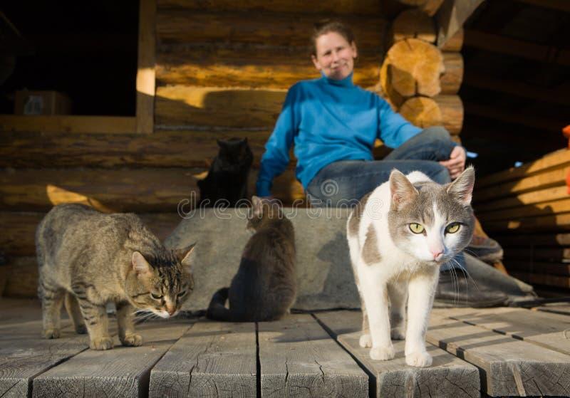Frau mit ihren Katzen stockbilder