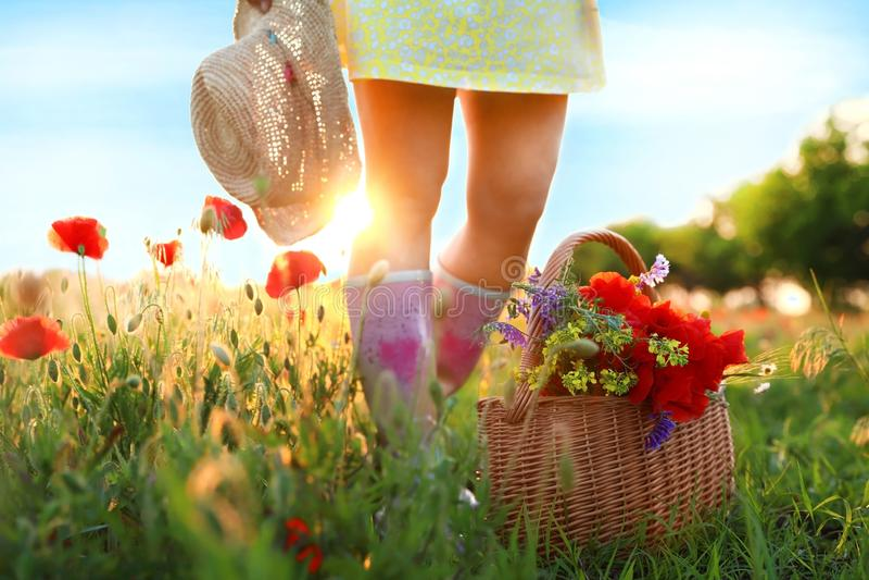 Frau mit Korb von Mohnblumen und von Wildflowers auf dem sonnenbeschienen Gebiet lizenzfreie stockfotos