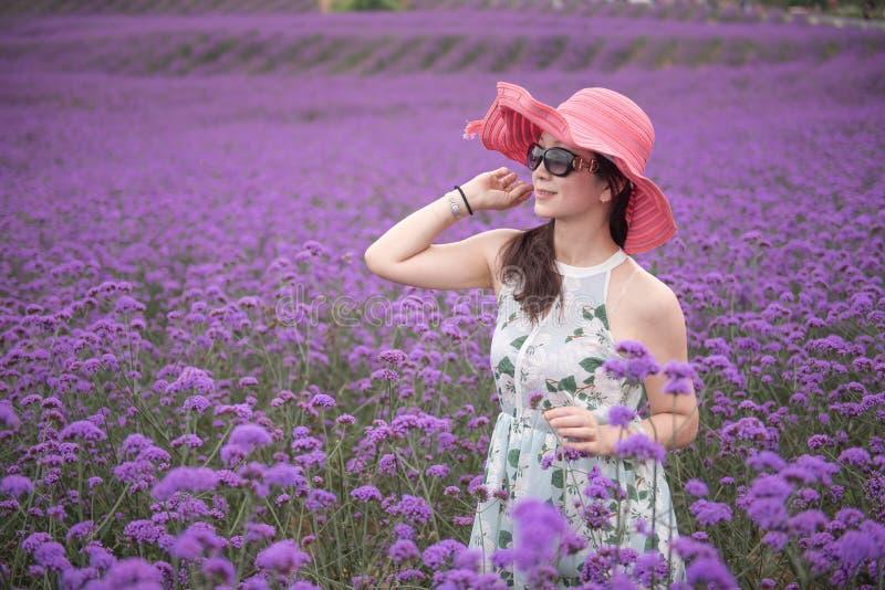 Frau mit rotem Hut im Lavendelfreizeitpark stockbild