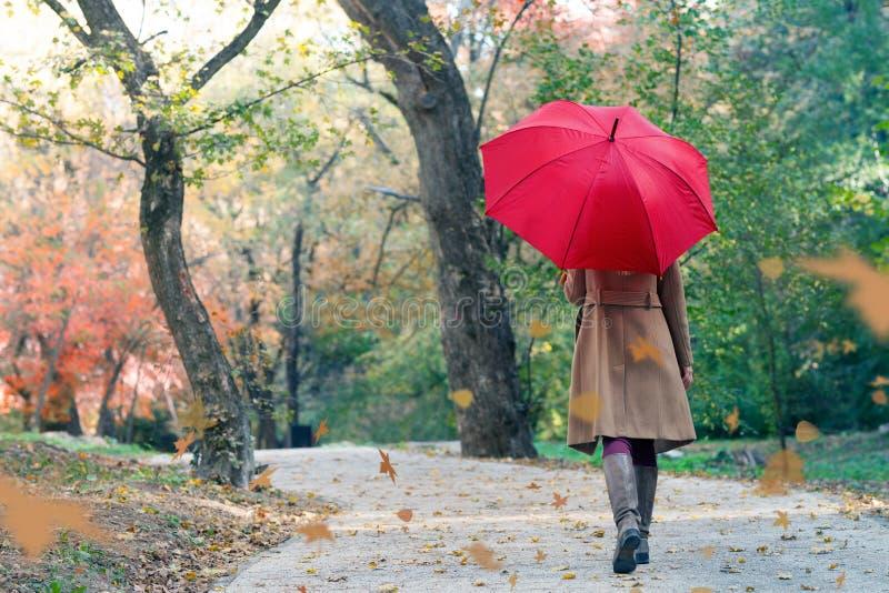 Frau mit rotem Regenschirm gehend am Regen im schönen Herbstpark lizenzfreies stockfoto