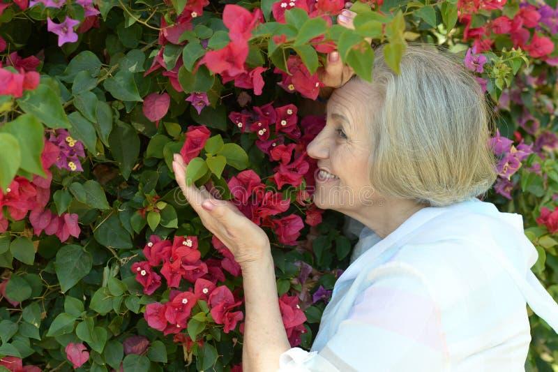 Frau mit roten Blumen lizenzfreie stockbilder