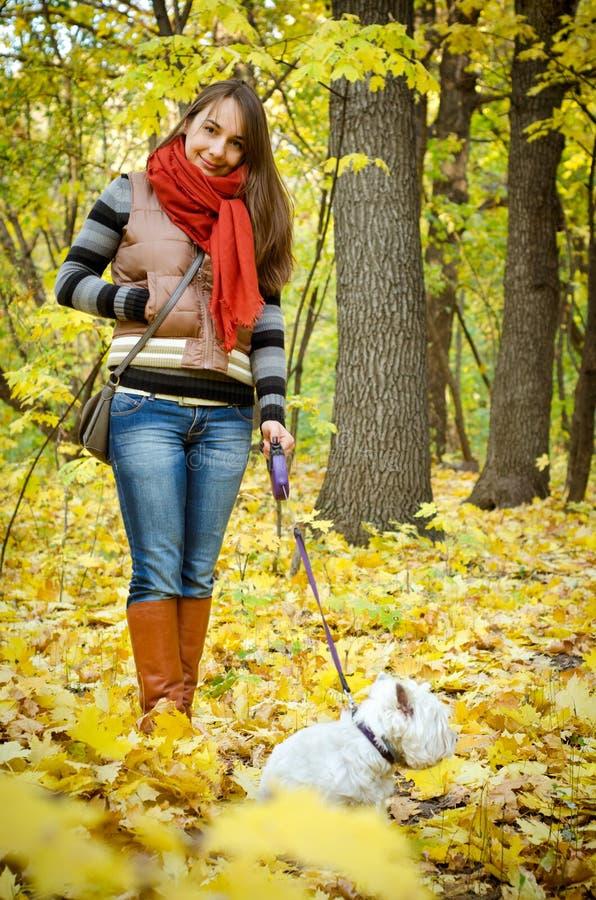 Frau mit Terrier stockbilder