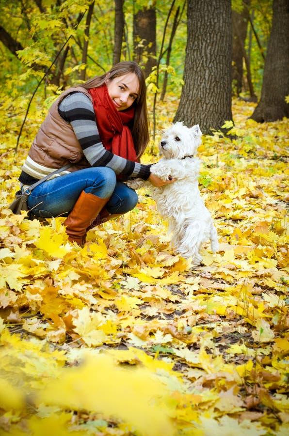 Frau mit Terrier stockfoto