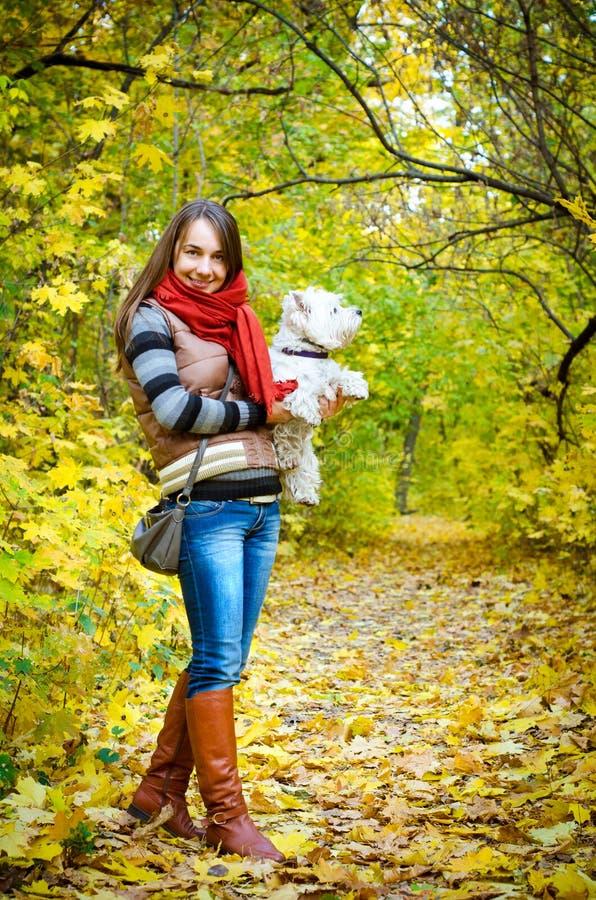 Frau mit Terrier stockfotos