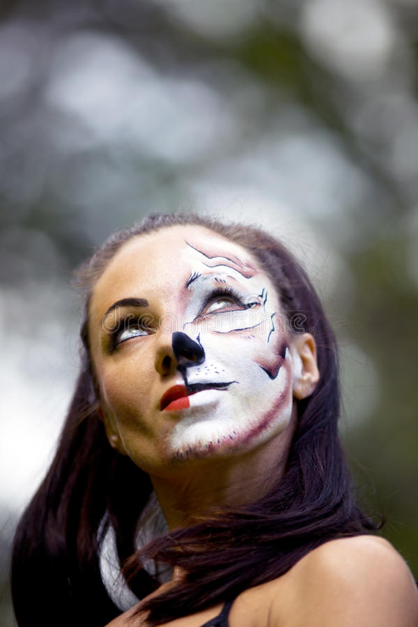 Frau mit Tigreßgesichtskunst stockbild
