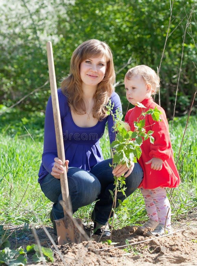 Frau mit Tochter stellt Busch ein lizenzfreies stockfoto