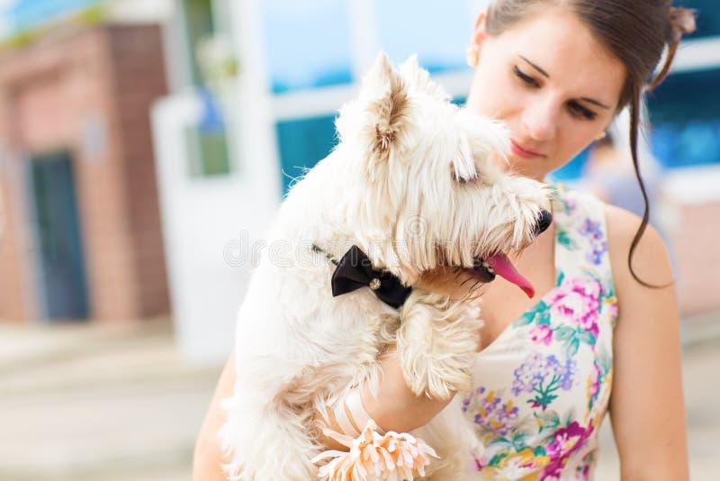Frau mit weißem Terrier des Westhochlands stockfotos