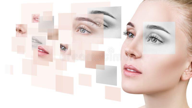 Frau ` s Gesicht sammelte von den verschiedenen Teilen stockbild