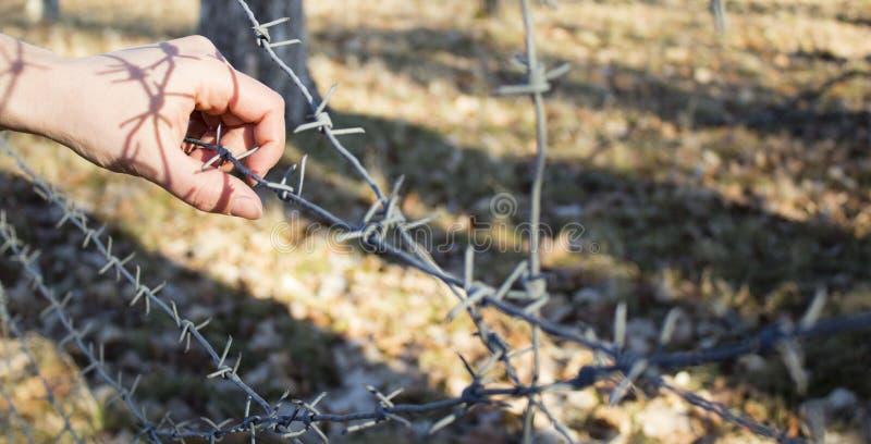 Frau ` s Hand, die Stacheldrahtzaun für emotionale Gefangenschaft hält und wünscht zum Unabhängigen lizenzfreies stockfoto