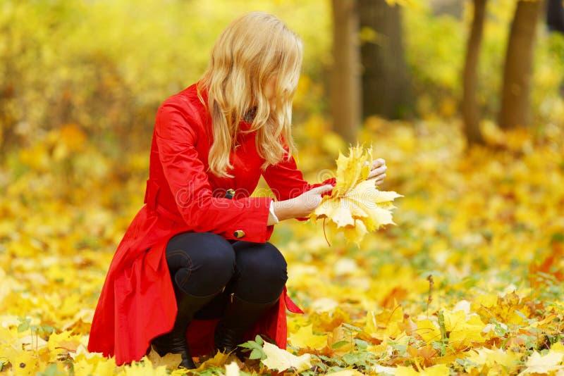 Frau sammeln Blätter lizenzfreies stockbild