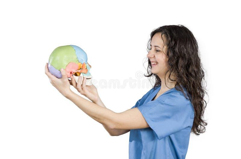 Frau schaut einen gefälschten bunten Schädel stockbilder