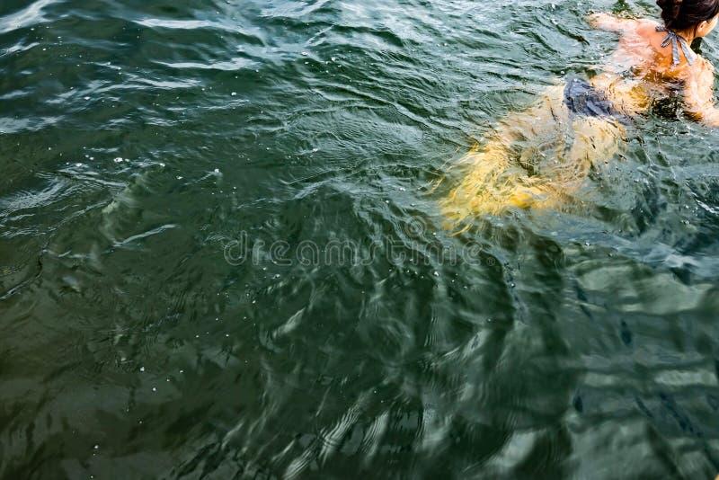 Frau swimmingin der Ozean stockbild
